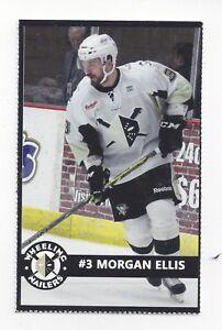 2014-15 Wheeling Nailers (ECHL) Morgan Ellis (Eisbären Berlin)