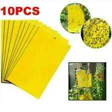 20 x Large Yellow Greenhouse Sticky Traps - Catch Multiple Flying Insect Pests