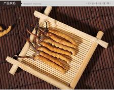 1.5 g (3 Pieces) Tibetan Nagqu Wild Cordyceps Sinensis Dong Chong Xia Cao