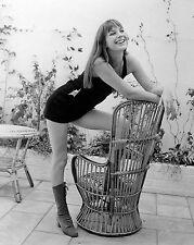 """Jane Birkin 10"""" x 8"""" Photograph no 7"""