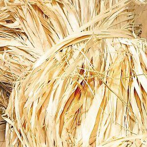 Floristry Raffia natural beige 900g big bag long fibres rustic crafts floral art