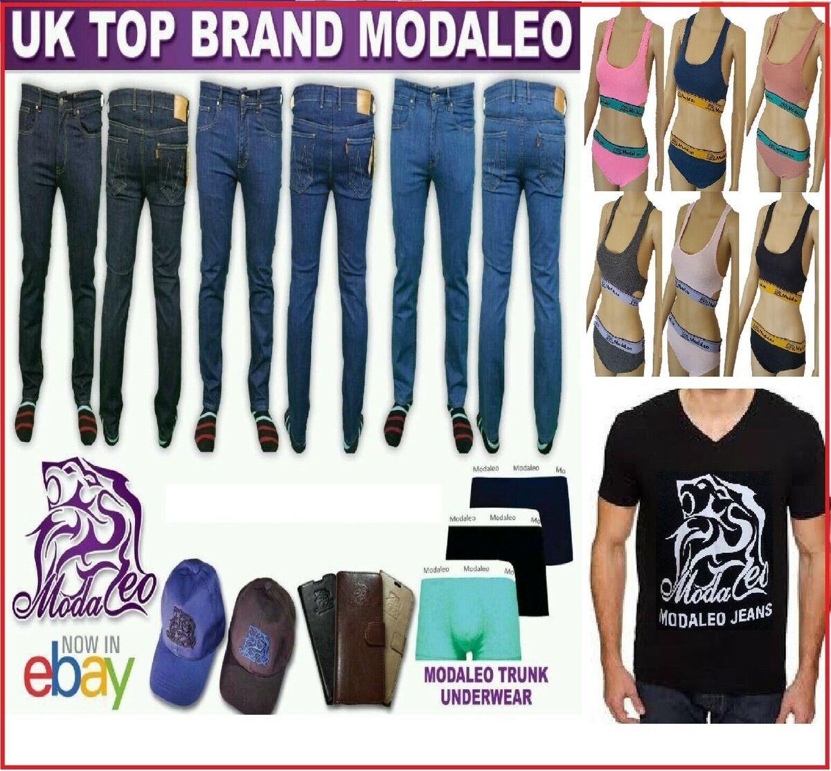 modaleo-collection