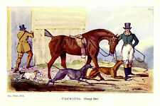 GREYHOUNDS COURSING HUNTING HARES RABBITS, HEADING OUT WITH THE DOGS, PRINT
