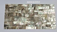 "Black Mother of Pearl Shell Veneer Sheet (.006"" of an inch thick)"