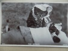Vintage Old Postcard Posted 1938 Cats Kittens Humour Joke Funny The Invalid   b