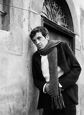 PHOTO JEAN-PAUL BELMONDO - 11X15 CM  # 5