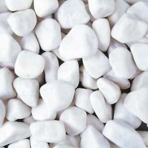 20-40mm Angel White Pebbles Cobbles Stone Decorative Aggregate Polar LRS 20kg