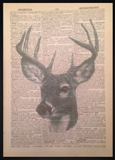 Vintage Stag Head Deer Print  Dictionary Page Wall Art Picture Hunting Lodge