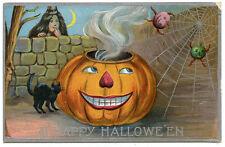 Halloween Large JOL Spider Web Black Cat Bugs?