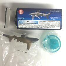 Aquatales Bottle Cap Mini Figure #16 Oceanic Whitetip Shark Kaiyodo Japan