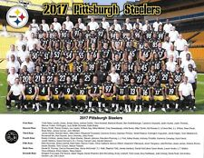 PITTSBURGH STEELERS 2017 COLOR 8X10 TEAM PHOTO.