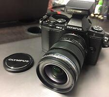 Olympus OM-D E-M5 + 12-50mm 1:3.5-6.3 EZ + Flash FL-LM2