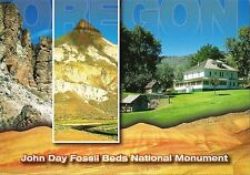 Postcard Oregon John Day Fossil Bed National Monument Unused MINT