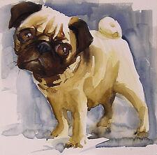 Acuarela * watercolor * Perro Carlino* Pintura original