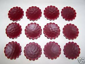 Tarts - Wax Melts - Hand Poured - Super Scented - 12 Cinnamon Apple Berry