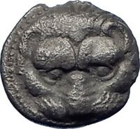 RHEGION in BRUTTIUM Authentic Ancient 415BC Silver Greek Coin LION OLIVE i73824