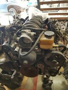 Ls1 Motor And Auto