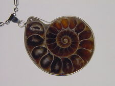 BUTW- Silver Ammonite nautiloid fossil  48 mm pendant necklace jewelry 6149K