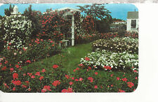 Northern Section of  Jackson & Perkins Rose Garden  Newark  NY    Postcard 2177