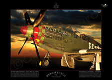 """P-51B Mustang HS8X """"a look under the skin"""""""