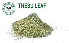 Diabetic Tea Insulin Canereed Igneus Thebu SPIRAL GINGER Leaves Costus speciosus