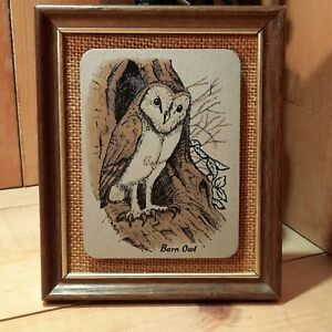 Vintage Hand Coloured Titanium Etching by LEWIS & CLAYTON 1977 BARN OWL