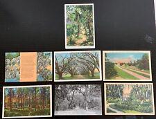 Lot of 7 Original Vintage Postcards - South Carolina -Myrtle Beach, Spanish Moss