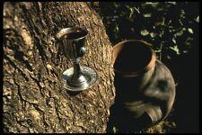 122073 modifica l'acqua in vino simbolico di jesuss primo miracolo A4 FOTO STAMPA