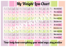 Weight Loss Chart - 10 stone - with pen - mark off 1/2 pounds - Slimming Tracker