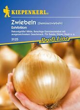 Zwiebel Gemüsezwiebel * Exhibition * MHD 01/21 Kiepenkerl 3125