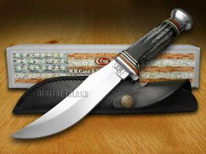 Case xx Fixed Blade Skinner Hunter Knife Genuine Buffalo Horn 17915
