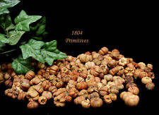 2 Cups Mini Pumpkin / Putka Pods ~ Fall Bowl Fillers ~ Natural Mix