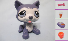 Littlest Pet Shop Dog Husky Purple Eyes 1217 and Free Accessory Lps Exclusive