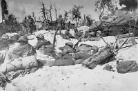 WWII photo American Marines rest after landing on the island of Peleliu/11d