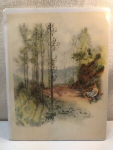 Vtg 1890-1950's Edourad Chimot French Artist Print Lady Rests On Wooded Path WOW