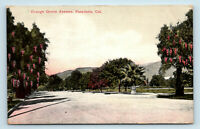 PASADENA, CA   ORANGE GROVE AVE STREET SCENE   EARLY 1900S POSTCARD
