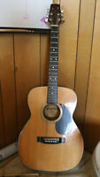 Carlos Acoustic Guitar