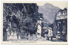 Avenue du Mamelon Vert Cauterets France Postcard