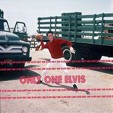 "ELVIS PRESLEY in the Movies 1965 8x10 Photo ""GIRL HAPPY"" FOOTBALL BREAK"