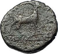 AIGAI in AEOLIS 2-1stCenBC Authentic Ancient Greek Coin APOLLO & GOAT i68384