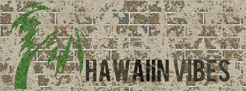 hawaiian-Vibes eBay Shop