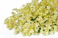 FRONTIER ELDER FLOWERS WHOLE-1 pound