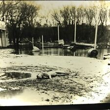 Vtg Magic Lantern Glass Slide Photo Dead Dog In Flooded Streets