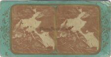 Photo Fraget & Viret Cascade Stereo Vintage albumine ca 1865