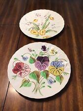Blue Ridge Pottery Dinner Plates.