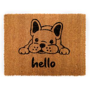 Frenchie Bull Dog Door Mat: Indoor Outdoor Non-slip Welcome Doormat UK