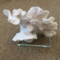 "Large White Coral Sculpture 7""H X 9""W. On Glass Base, Ecologically friendly"