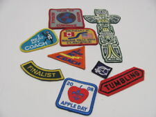 9 Scout Patches