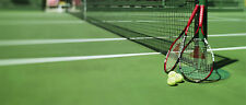 Tennis Betting System - Earn Money Now on Betfair 24 hours a day