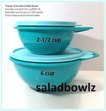 TUPPERWARE THATSA BOWL MINI 6 cup and EXTRA MINI 2-1/2 cup Two Small Bowls! Pair